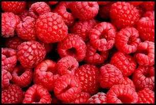 Здоровое питание, полезные свойства малины