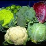 Здоровое питание — полезные свойства капусты