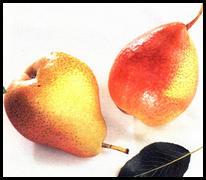 Меню здорового питания, по цвету овощей и фруктов